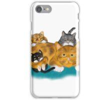 Three Kittens Pile on Momma iPhone Case/Skin