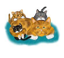 Three Kittens Pile on Momma Photographic Print