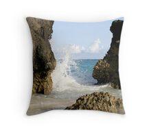 the coast Throw Pillow