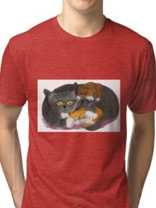 Momma  Cat and her Two Kittens Tri-blend T-Shirt