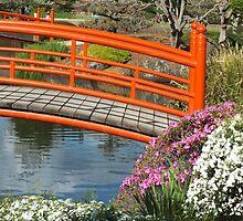 Japanese Gardens Toowoomba Australia by sandysartstudio