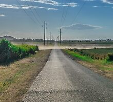 Dusty Road out in rural Queensland by Ann Pinnock