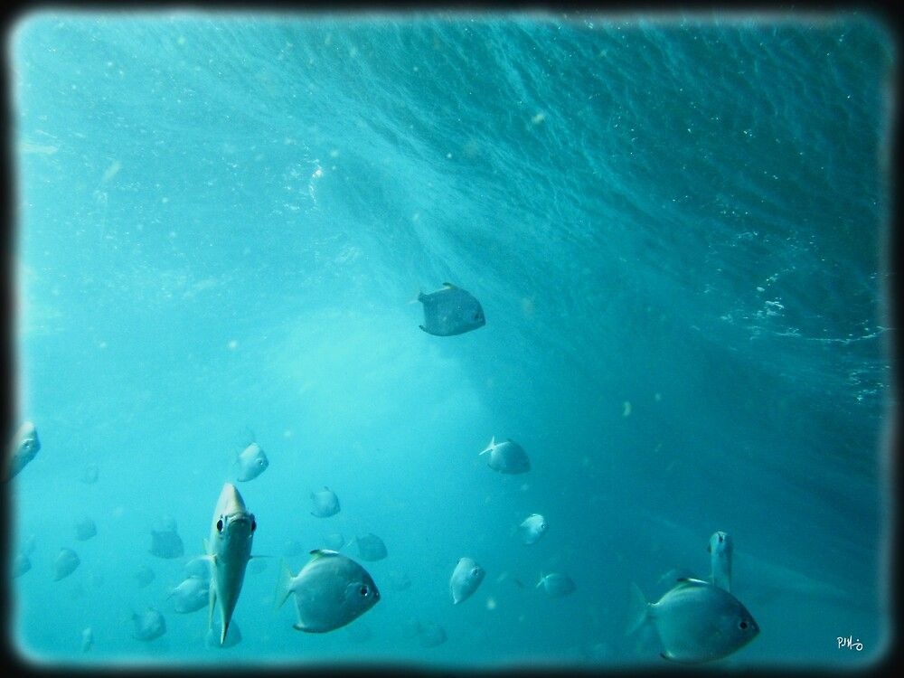 FIsh 3... by Paul Manning