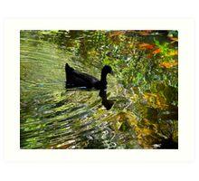 Silky waters Art Print
