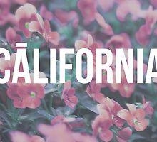 Hipster California Pink by juststickit