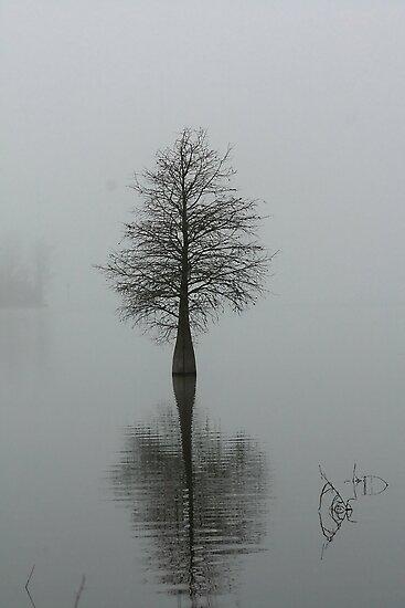 Alone by photosan