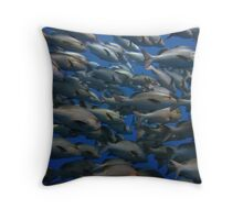 Snappers in shark yolanda reef  Throw Pillow