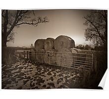 Winter Bales Poster