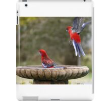 Move Over, or I will land on your head ! iPad Case/Skin