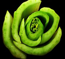 Bok Choy flower by oddoutlet