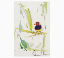 Gouldian Finch Kids Clothes