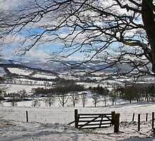valley view  too by dinghysailor1