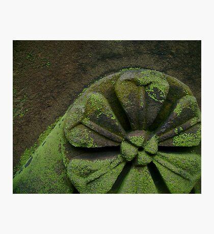 Mossy Stonework Photographic Print