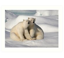 Polar Bear Brothers Art Print