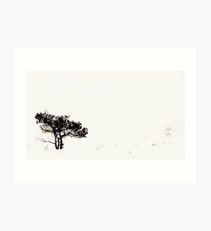 From the Fog II Art Print