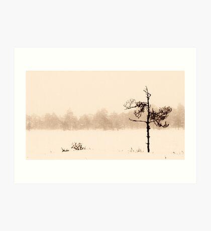 From the Fog IV Art Print