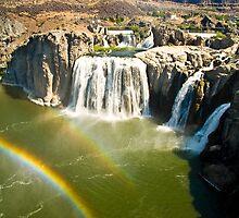 Shoshone Falls by Albert Dickson