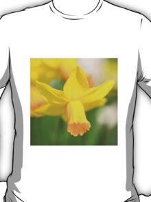 Narcissus  T-Shirt