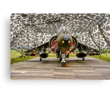 Harrier GR.7 ZD407 hiding Canvas Print