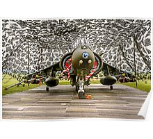 Harrier GR.7 ZD407 hiding Poster