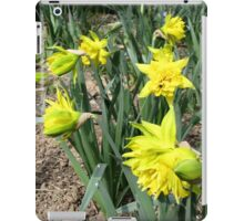 Hello Spring with a Smile of Daffodils iPad Case/Skin