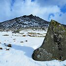 Cornwall: Snow at Rough Tor 2 by Rob Parsons