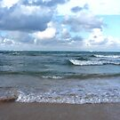Beach by Rachel Hoffman