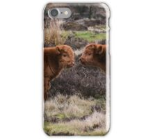 highland calves  iPhone Case/Skin