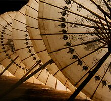 Vietnamese Umbrella by Thierry Barone