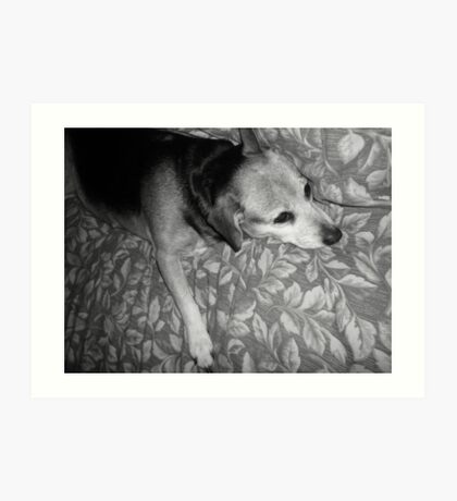 Tired Doggy Stretches Out Art Print
