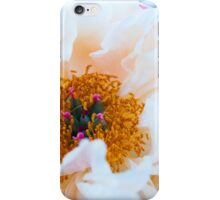 peony in the summer iPhone Case/Skin
