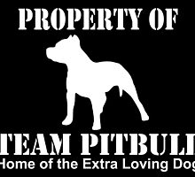property of team pitbull home of the extra loving dog by teeshoppy