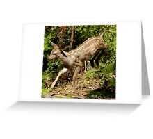 Fawn Leaping from bushes Greeting Card