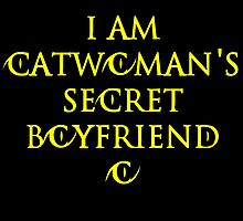 I am Catwoman's secret boyfriend by River-Pond