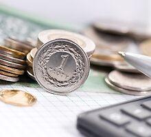 one value polish zloty coin by Arletta Cwalina