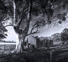Farm Ruins - Red Creek Road, Woodchester, South Australia by Mark Richards