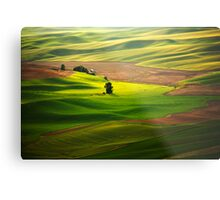 Silky Green Metal Print