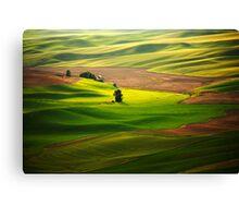 Silky Green Canvas Print
