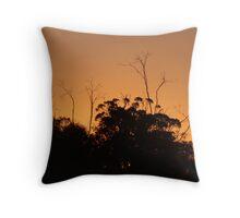 dryandra sunset Throw Pillow