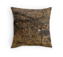 TCP Throw Pillow