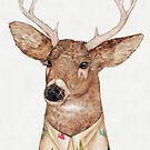 White-tailed Deer  by AnimalCrew