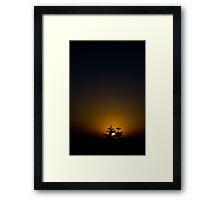 Beyond the pines Framed Print
