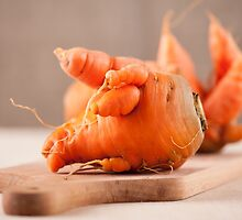 deformed carrot roots by Arletta Cwalina
