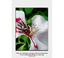 Precious Moment Photographic Print