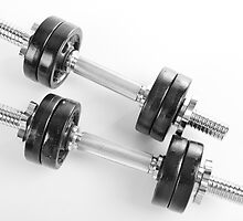 Chrome hand barbells weights  by Arletta Cwalina