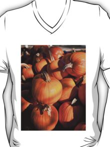 Pile of traditional pumpkins T-Shirt