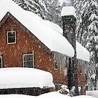 Longmire Lodge - Mt. Rainier, WA by Julia Washburn
