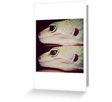 Eye of The Gecko  Greeting Card