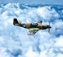 Vintage World War II Fighter Plane - P-51 Mustang by Mark Tisdale