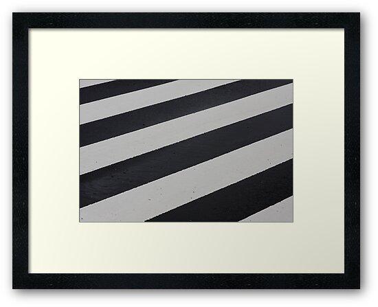 Industrial Zebra by Julia Washburn